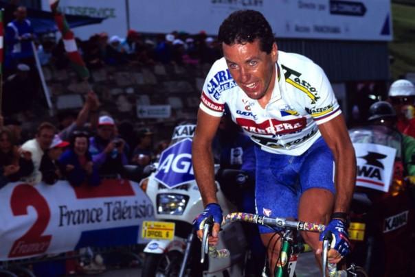Roche 1987