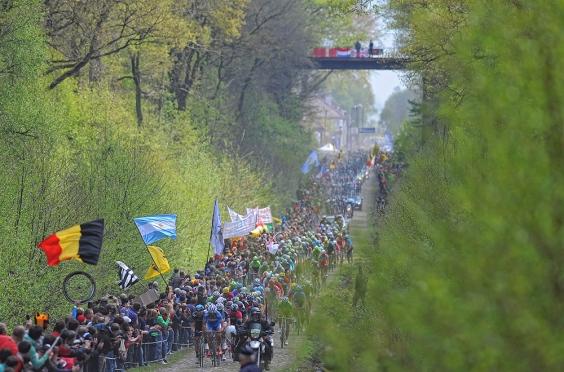 Paris-Roubaix: Arenberg Forrest
